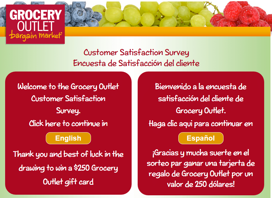 www.go-opinion.com Grocery Outlet Survey page